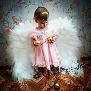 Angel wings Novosibirsk