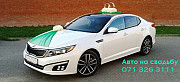 Rent a car rental. Wedding procession. decorations for the wedding KIA OPTIMA