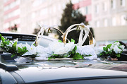 Rings on the wedding car Kolomna