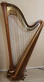 Various harps for rent